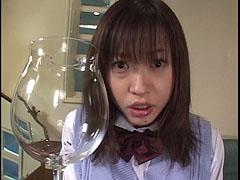 樹若菜大全集02